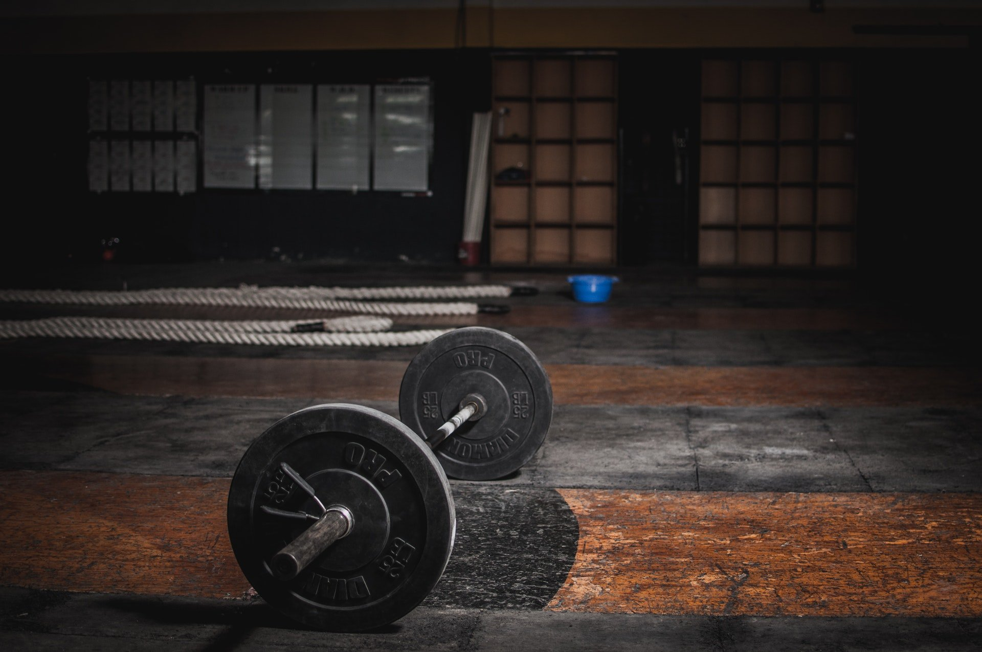 Are you gym ready? - Pickwick Physiotherapy
